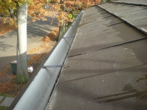 Gutter Cleaning in the River Parishes of Louisiana