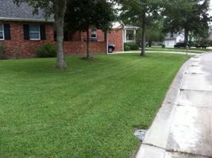 Weekly Lawn Maintenance in the River Parishes of Louisiana